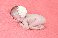 Katelyn Bailey {newborn}